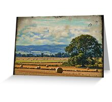texture rural landscape Greeting Card