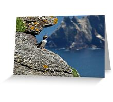 Puffin Skellig Island, Ireland Greeting Card