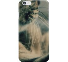 A Cat's Whiskers iPhone Case/Skin