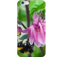 Bee on Aquilegae iPhone Case/Skin