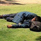 Afternoon nap at the park (2) by Gili Orr
