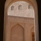 Window in Oman by Julie Waller