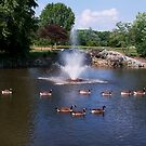 Geese a Floating! by Trudy Wilkerson