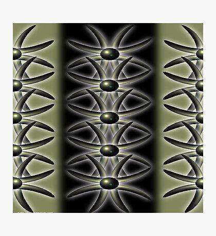 polarity Photographic Print