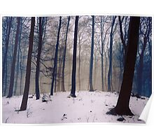 Whispers of the Forest - Forest Trees with Snow Poster
