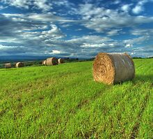 Hay Bales and Clouds by Michael  Dreese
