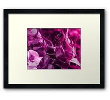 Rose Bud And Pansy  Framed Print