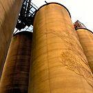 Grain Elevators by Barry W  King