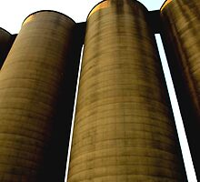 Grain Elevators 2 by Barry W  King