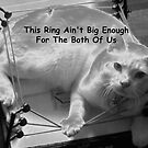 This Ring Ain't Big Enough For The Both Of Us by Ruth Palmer