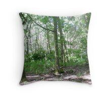 Sister trees in Lytchett woods Throw Pillow