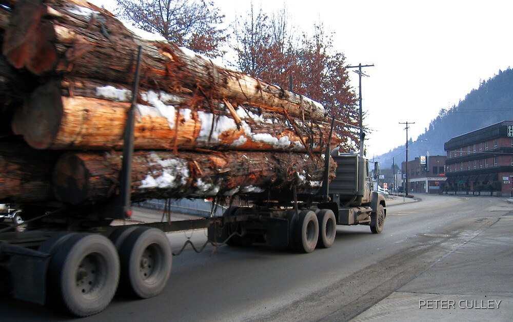 Americana • Timber 'jinker' truck, Orofino Idaho by PETER CULLEY