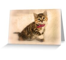 The Little Cat Greeting Card