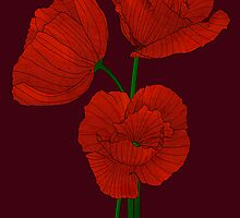 Papaver by Till-absurde