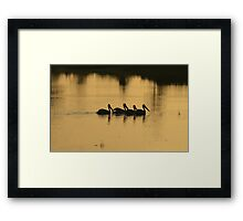 Swim Faster! The Sun is Coming! Framed Print