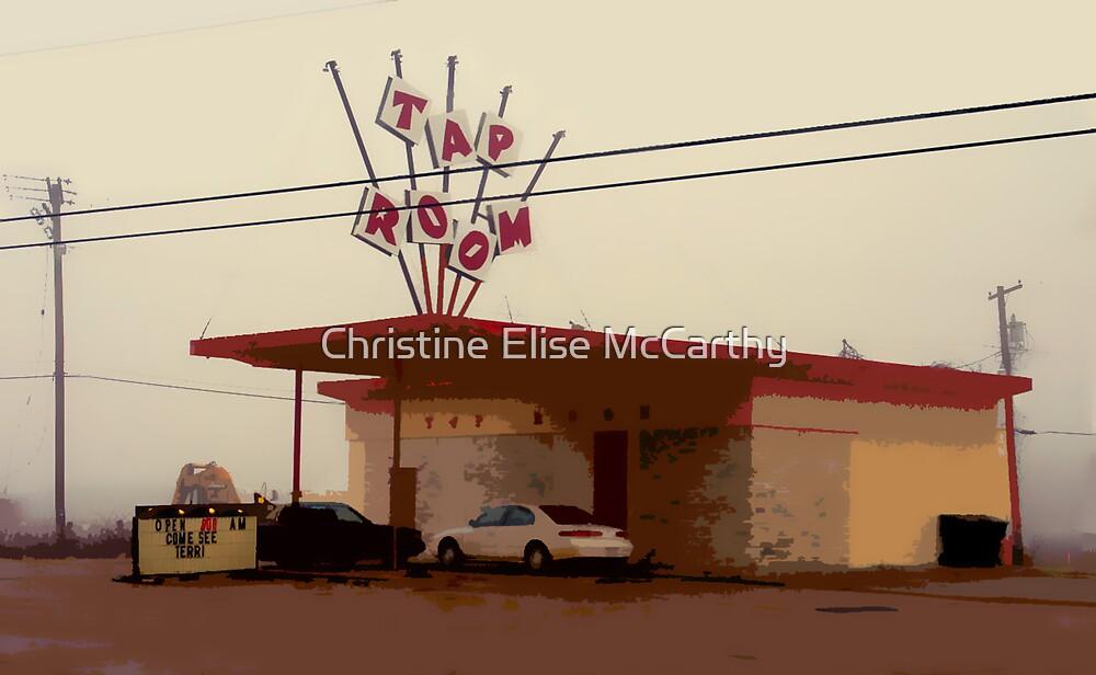 Come See Terri by Christine Elise McCarthy