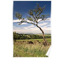 Pendle Hill from Wycoller Poster