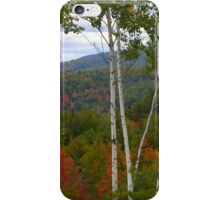White Birch and Fall Foliage - Maine iPhone Case/Skin