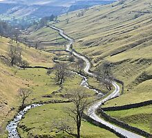 The long and winding road. by John (Mike)  Dobson