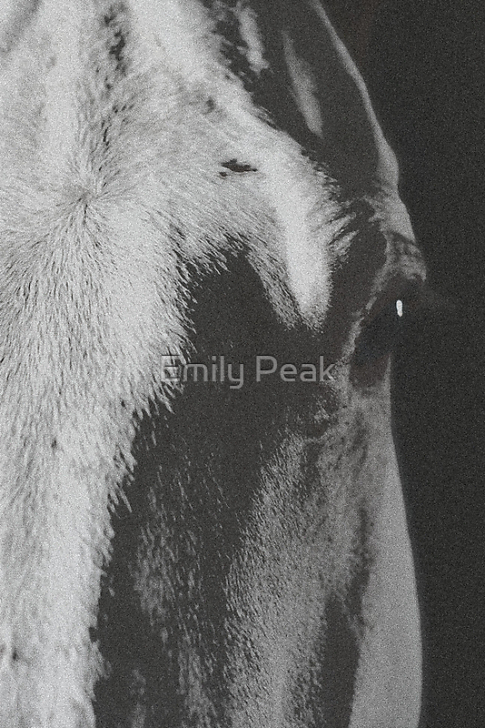 Soul Seeker by Emily Peak