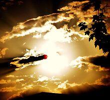 Golden Sunset by JantraK