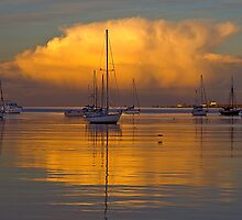 Across The Bay by Wayne Harris