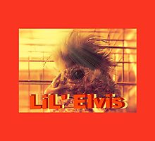 """LiL' Elvis""... prints and products by © Bob Hall"