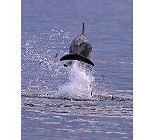 Back Splash Photographic Print