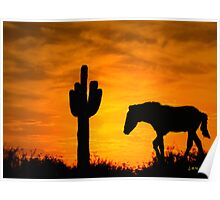 Lone Cactus and Horse Poster