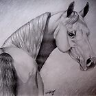 Arabian Mare by Felicity Deverell