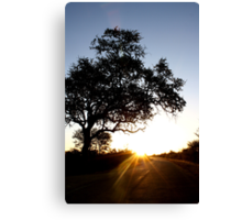 This is sunset boulevard... Canvas Print