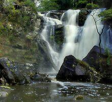 """""""Stevensons Falls"""" by Phil Thomson IPA"""