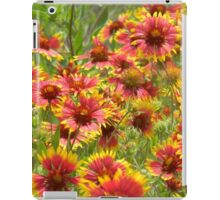 A Little Patch of Indian Paintbrush iPad Case/Skin
