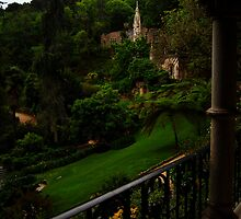 Quinta da Regaleira, view from the palace  by Wayne Cook