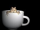 Cup Of Toad by Shelly Harris