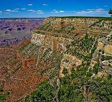 Grand Canyon - South Rim by eegibson