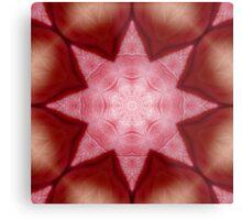 Petals and Star Metal Print
