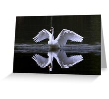 Swan and Reflection Greeting Card
