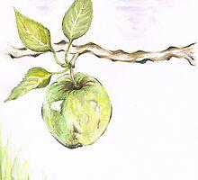 Golden Delishous Apple by Teresa White