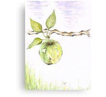 Golden Delishous Apple Canvas Print