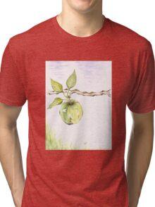 Golden Delishous Apple Tri-blend T-Shirt