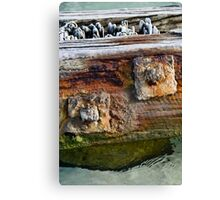 Stories of the Sea II Canvas Print