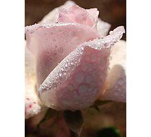 Beautiful After Rain Photographic Print