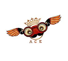 Flying Ace Photographic Print