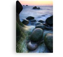 Cornwall : Cornish Curves Canvas Print