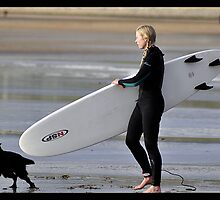 lahinch patrolling life guard dog by upthebanner