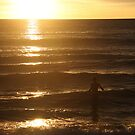 Morning swim on Collaroy - NSW by Scott Westlake