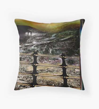The shed.. Throw Pillow