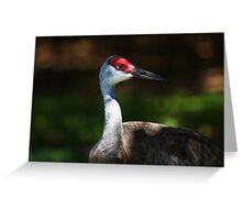 are you looking at me ? Greeting Card
