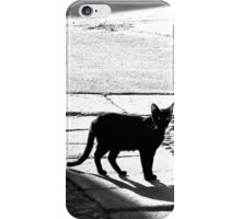 Black cat in black and white iPhone Case/Skin